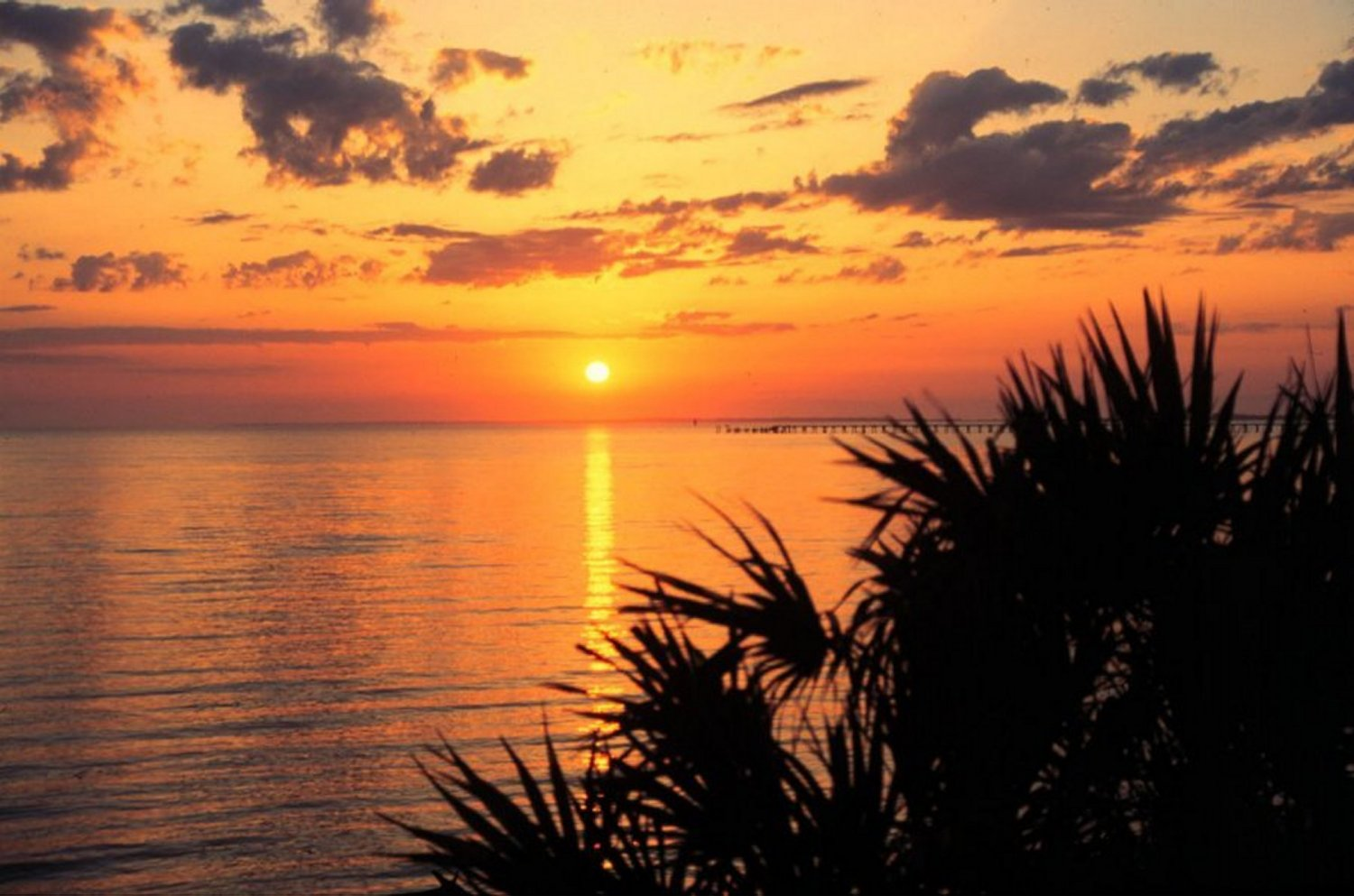 A view of a sunset and pier at Apalachicola Bay Aquatic Preserve