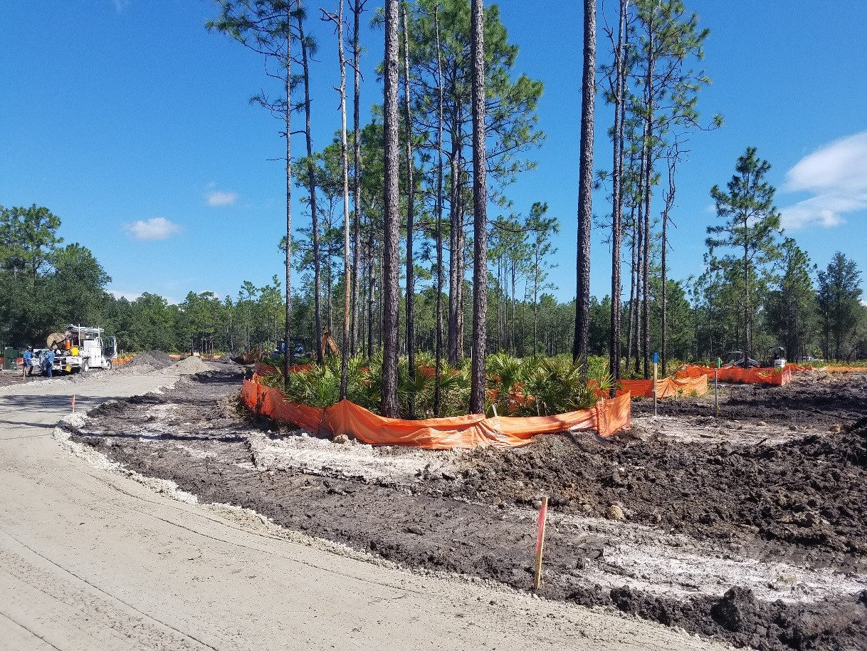 Phase I campground pre-construction at Colt Creek State Park.