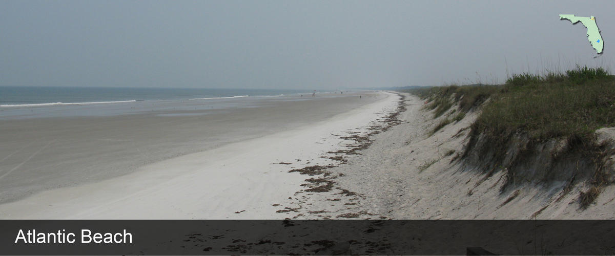 A view of the ocean and sand dunes at Atlantic Beach in Duval County, Florida