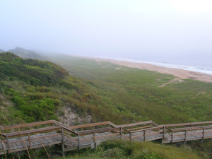 A view overlooking the dunes and beach boardwalk at Guana Tolomato Matanzas National Estuarine Research Reserve