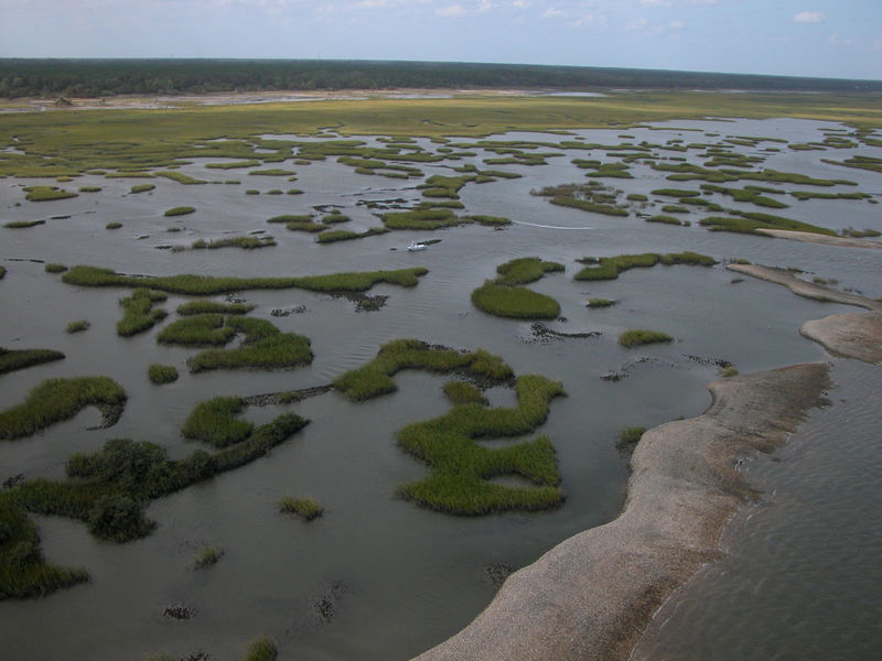 aerial view of a salt marsh at Guana Tolomato Matanzas National Estuarine Research Reserve
