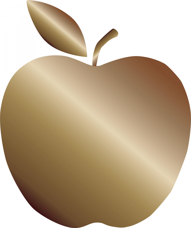 Graphic of the Green Schools Bronze Apple Designation