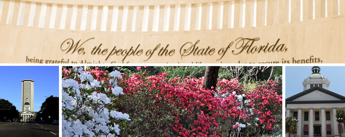 Photo Collage showing the preamble of the constitution and the capitol buildings and azaleas in Tallahassee, Florida