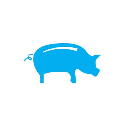 Icon of a pig