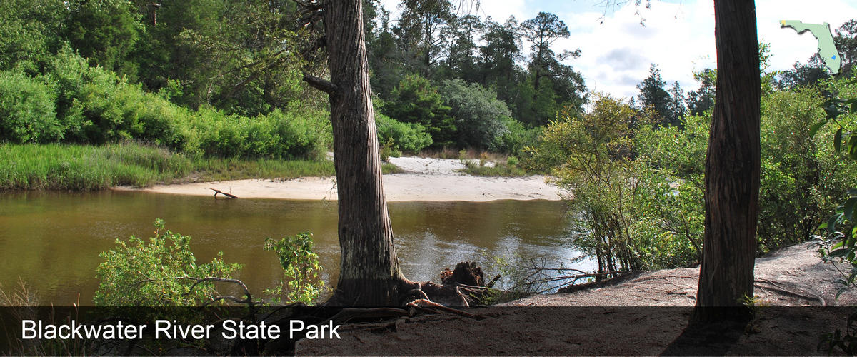 Looking at the sandy banks of the river at Blackwater River State Park in Santa Rosa County, Florida