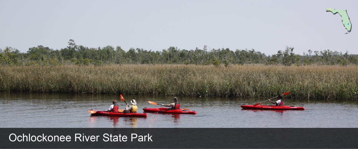 A group kayaking in the River in Wakulla County, Florida