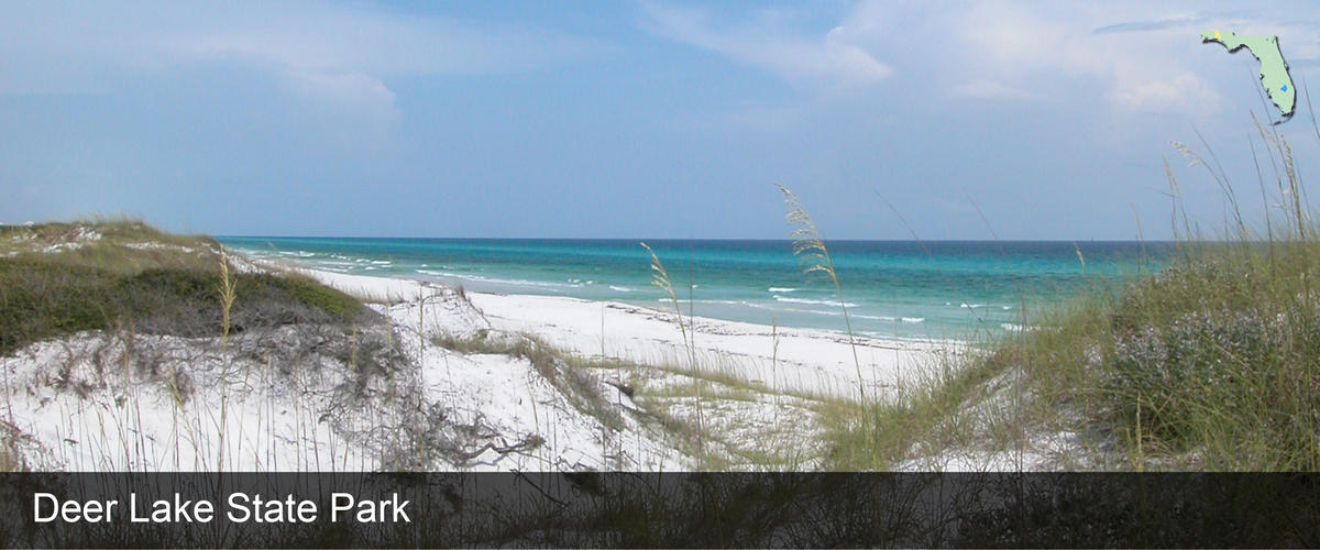 A view across the seacoast and dunes of the water in Walton County, Florida