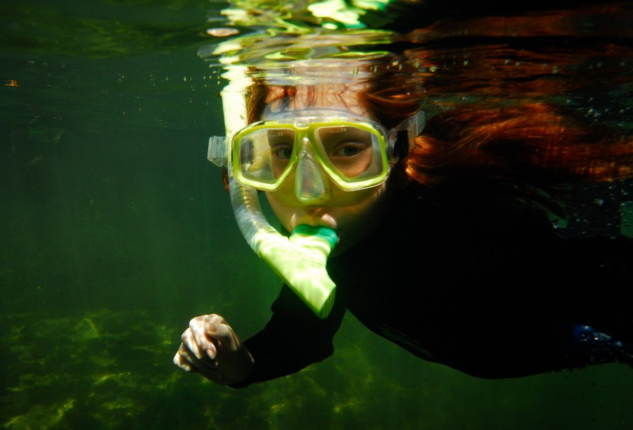 Blue Spring State Park - Person snorkeling in crystal clear water