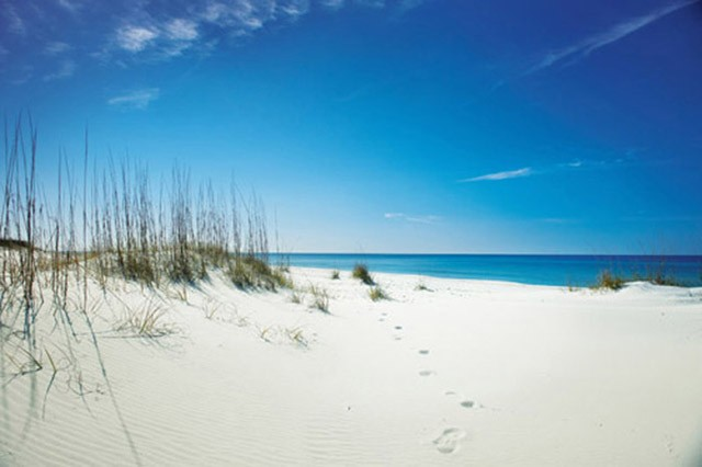 A view from the sand dunes of Shell Island at St. Andrews Aquatic Preserve