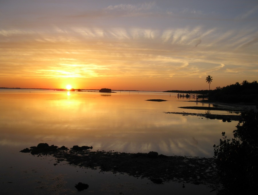 A view of a sunset at Pine Island Sound Aquatic Preserve