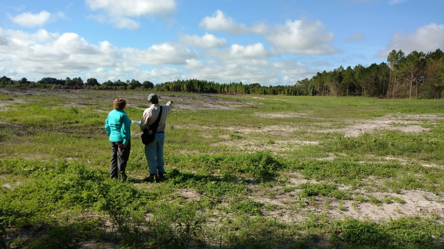 FDEP staff reviewing the progress of the Chicora restoration project designed to create wetland habitat and improve water quality in the Alafia River Basin