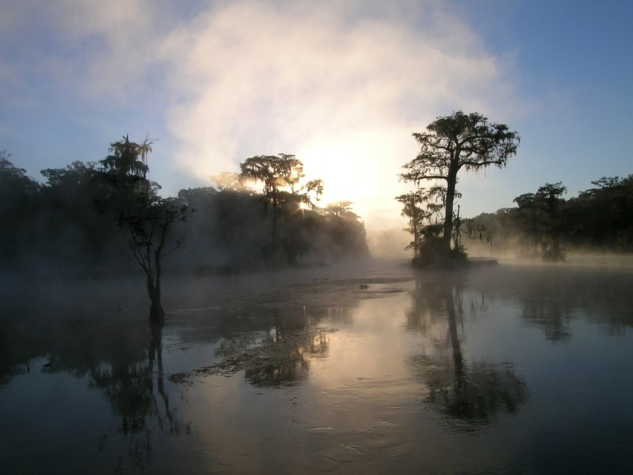 sunrise on the Wakulla River at Edward Ball Wakulla Springs State Park