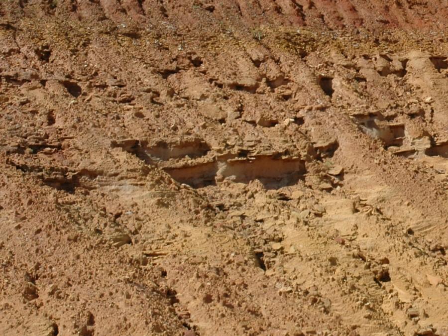Miccosukee Formation at BASF Pit, Gadsden County