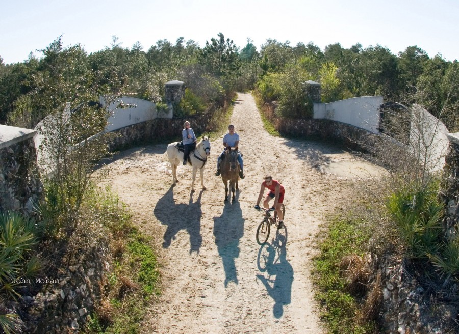 Two equestrians and a biker at the Land Bridge on the Cross Florida Greenway