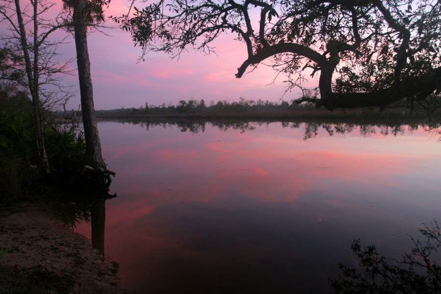 Sunrise with pink and purple coors on the lower Ochlockonee River