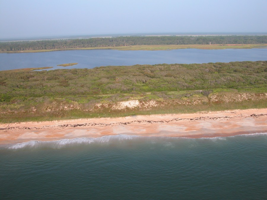 An aerial view of the dunes bordering the Guana River Salt Marsh.