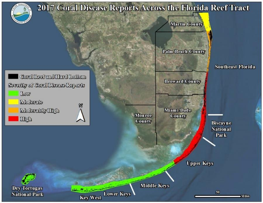 A 2017 map of southern Florida showing the current state of coral disease ranging from low to high.