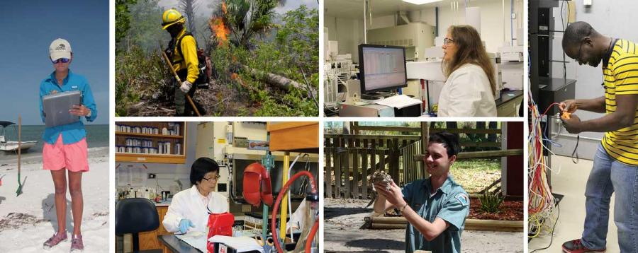A collage of photos showing different career opportunities within the Florida Department of Environmental Protection