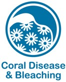 Blue and white web button for coral disease and bleaching