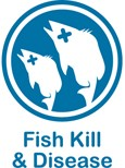 Blue and white web button for fish kill and disease