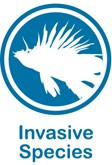 Blue and white web button for invasive species