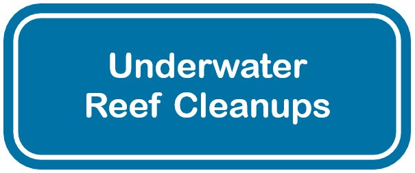 Blue and white web button for underwater reefs cleanups