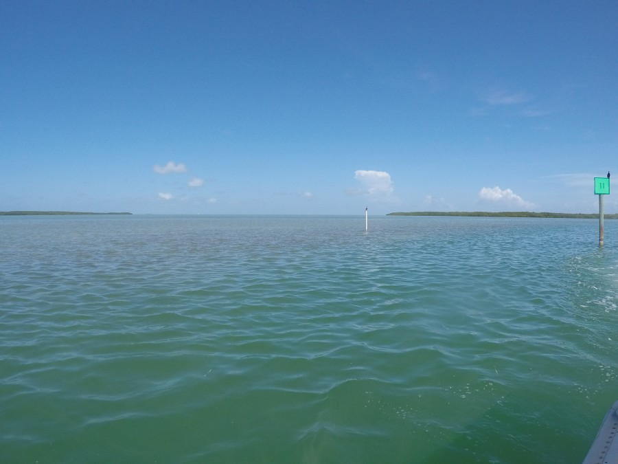 Looking at the ocean and barrier islands from Lignumvitae Key Aquatic Preserve