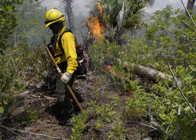 Fire technician managing a prescribed fire