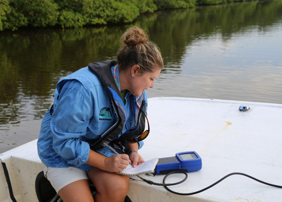 Researcher recording water quality data