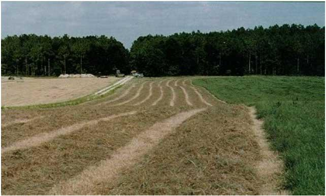 Biosolids from a domestic wastewater treatment facility are applied to a coastal bermuda grass field in Tallahassee.