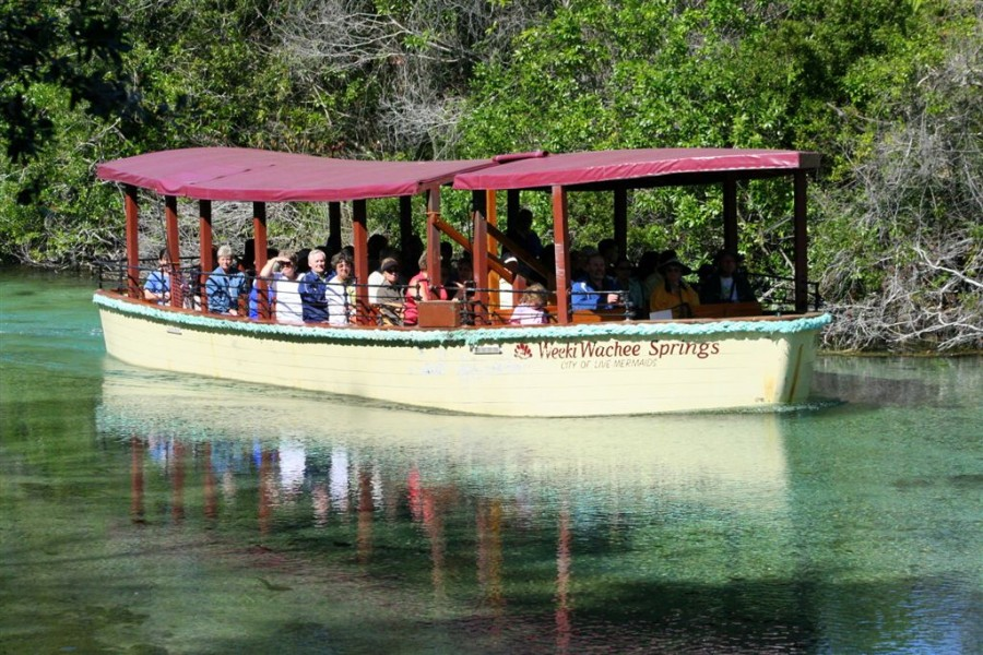 A group of people on a tour boat going down the river at Weeki Wachee Springs State Park
