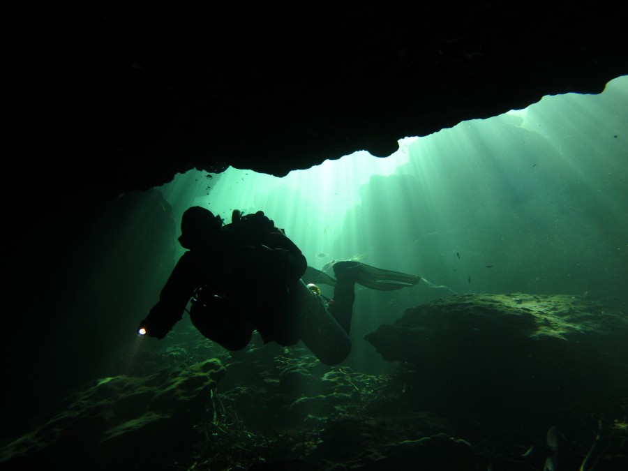 A scuba diver entering the cave at Wes Skiles Peacock Springs State Park