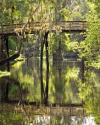 Hillsborough River State Park - Bridge crossing the river
