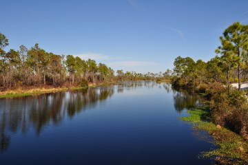 Big Lagoon State Park - View from the boardwalk