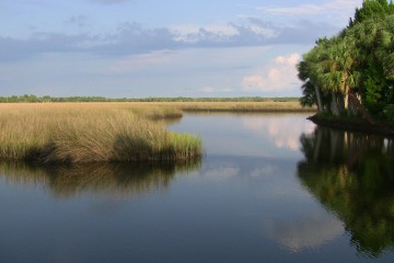 Crystal River Preserve State Park - Beautiful still water while looking out over the marsh