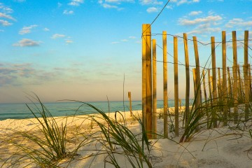 Grayton Beach State Park - Fence on the beach