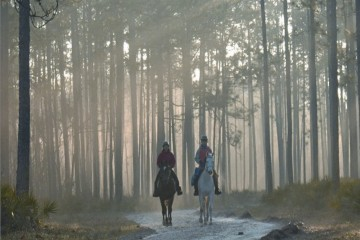 Two Equestrians in Apalachicola State Forest