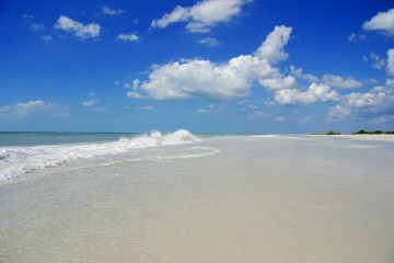 Honeymoon Island State Park - Blue Skies & White Sands on the beach
