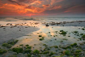 Honeymoon Island State Park - Tidal pool and Red sky