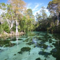 Weeki Wachee River downstream from Weeki Wachee Springs State Park