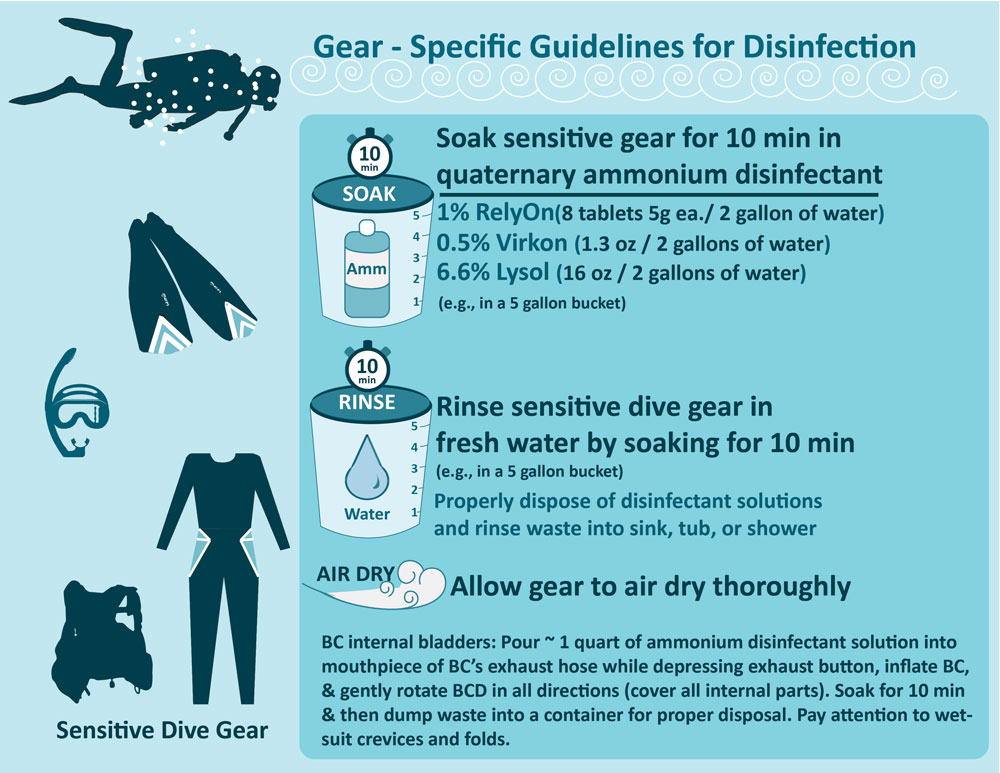 Dive gear contamination protocol for SCTLD updated 12-10-2019
