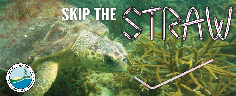 Skip the Straw Social Media Banner 3