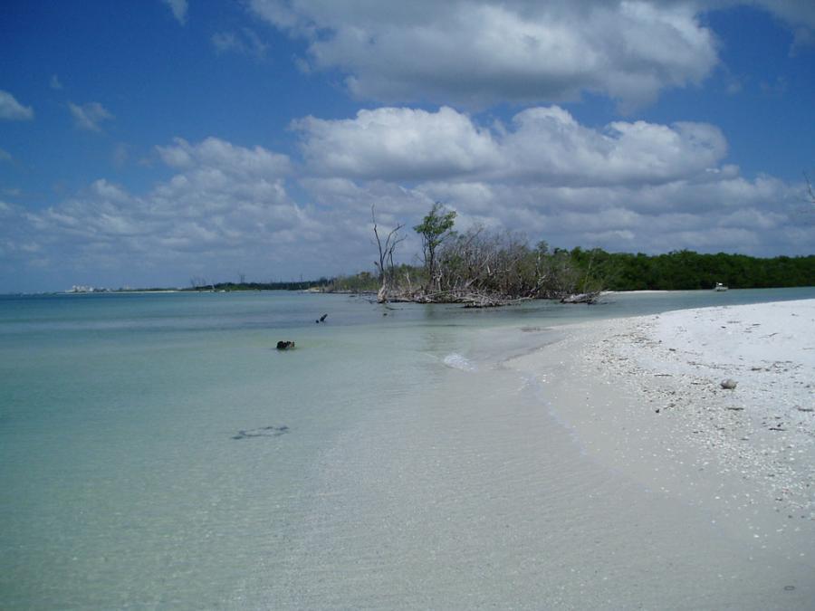 Estero aquatic preserve