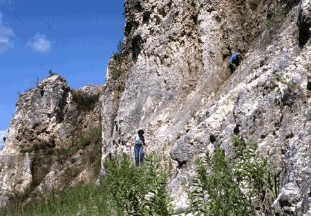 bridgeboro limestone formation