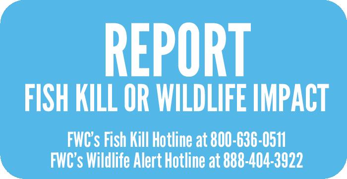 Navigation to Fish Kill Hotline