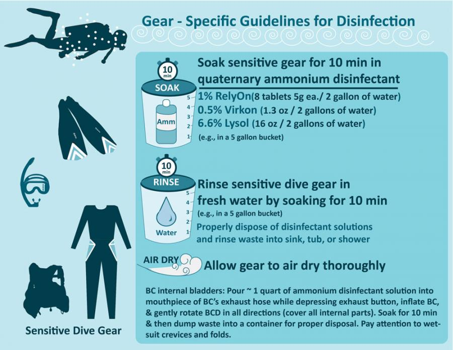Dive gear contamination protocol for SCTLD updated 10-23-2019