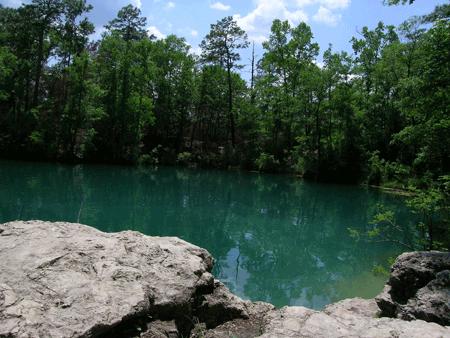 Edward Ball Wakulla Springs Cherokee Sink