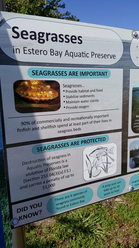 seagrass aquatic preserve