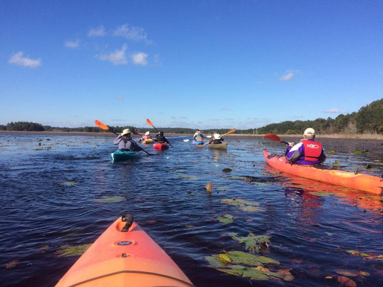 Kayakers participating on a winter group paddle on Lake Jackson Aquatic Preserve