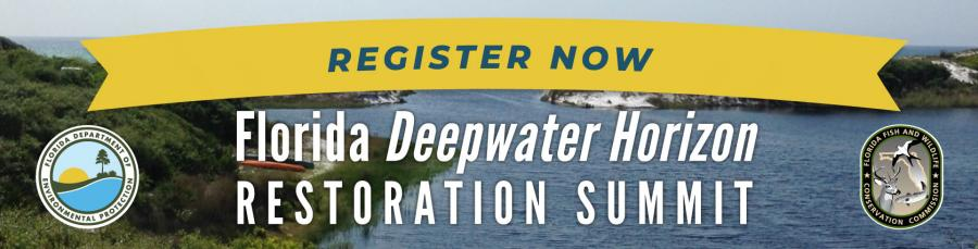Register Now for the Deepwater Horizon Restoration Summit